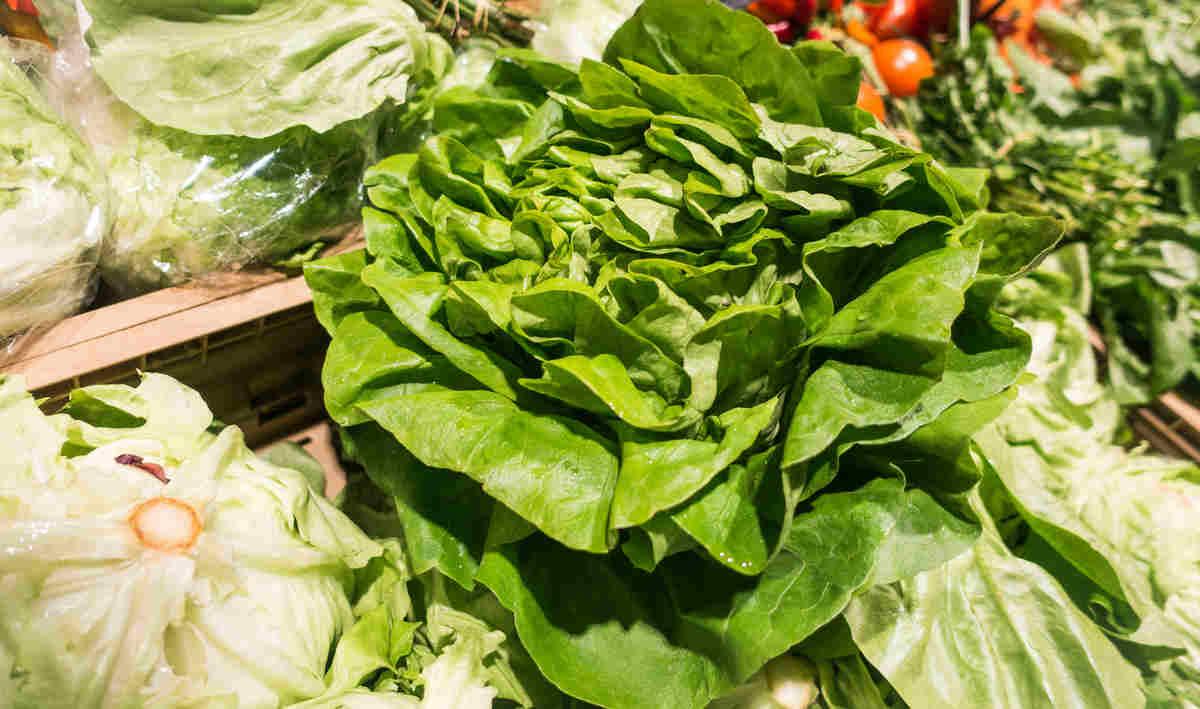 летний салат со своего огорода